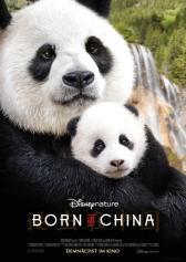 "Plakat zu ""Born in China"" | Bild: Disney"