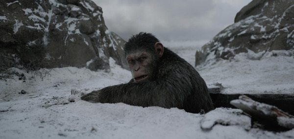 "Filmszene aus ""War for the Planet of the Apes"" 