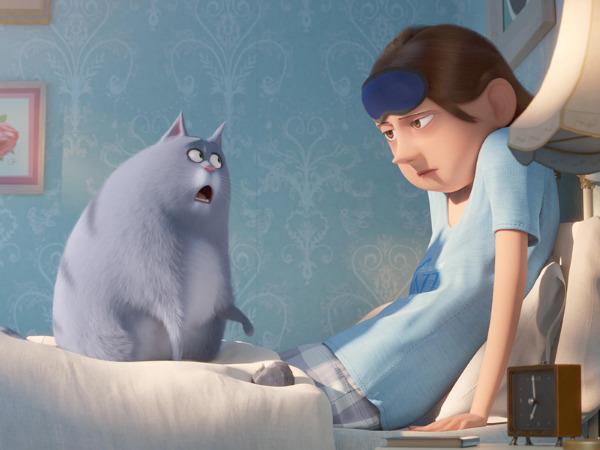 """Szenenbild aus """"Pets 2""""   Bild: Universal"""